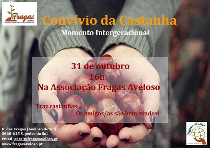 Cartaz_Castanhas